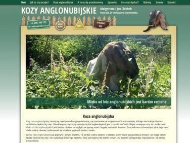Koza Anglonubijska - hodowla, sprzedaż